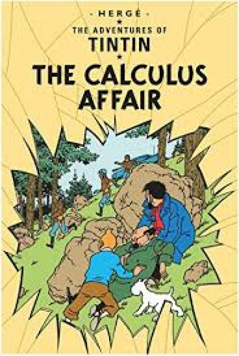 TIN TIN CALCULUS AFFAIR